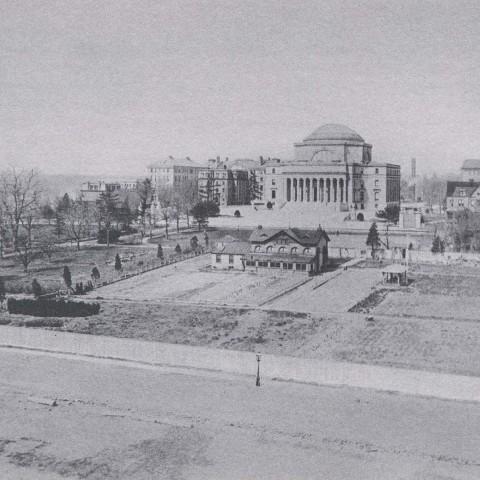 Columbia College Timeline Columbia College