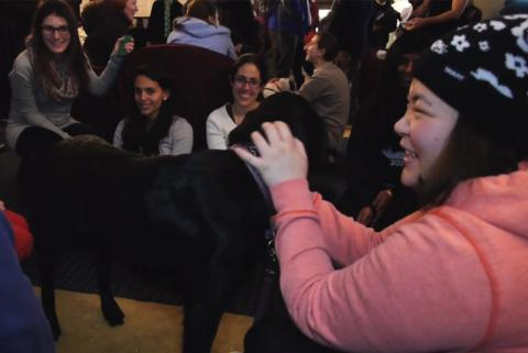During fall finals, Residential Life supported students with the 5th Annual Puppy Study Break. This popular event, held in John Jay Lounge, provides students a break from studying and offers crafts, Stressbusters massages and Pet Partners therapy dogs to play with.