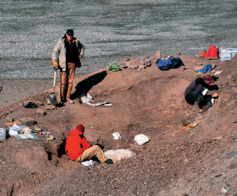 The crew excavates fossils in Bird Quarry in 2004. Several specimens lie encased in plaster, waiting to be shipped back to the labs for preparation. Photo: © Neil Shubin '82