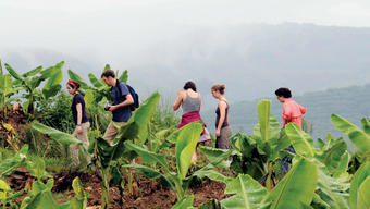 The students at a banana plantation outside a village in southern Yunnan province. Photo: Shahid Naeem