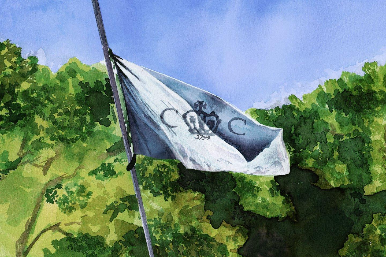 cct_flag