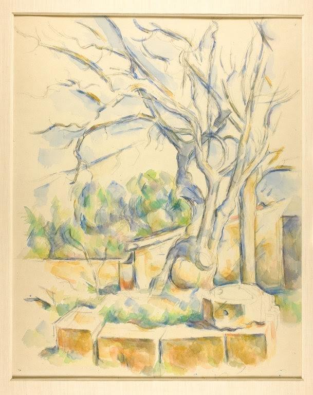 Pistachio Tree at Chateau Noir