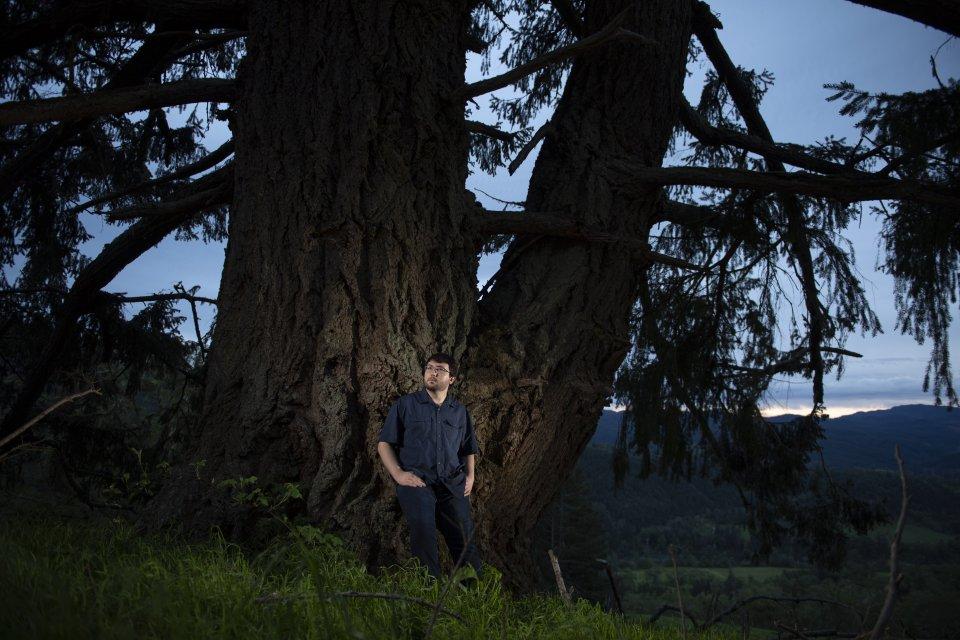 2_Giant Tree